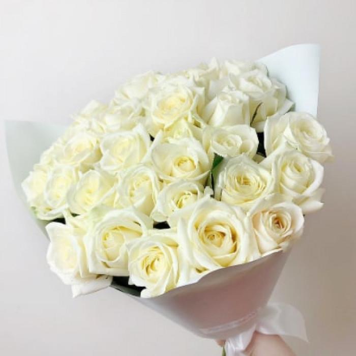Trandafiri albi gingasi